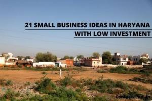 21 Small Business Ideas In Haryana With Low Investment In 2021
