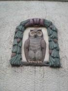 An owl on a wall!