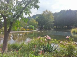 A pond in the Schlosspark (castle park)