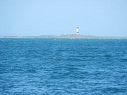 Dog Island with lighthouse