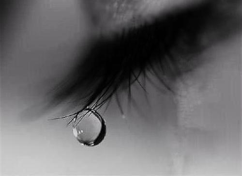 Giọt nước mắt ai?