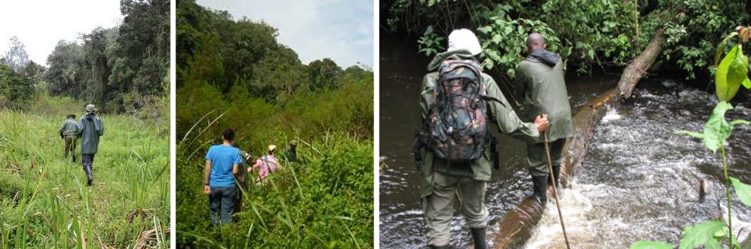 mount-bugulumiza-trail