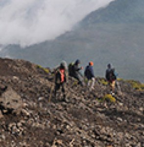 9 days gorilla trekking safari in Uganda & Mount Nyiragongo hiking tour Congo