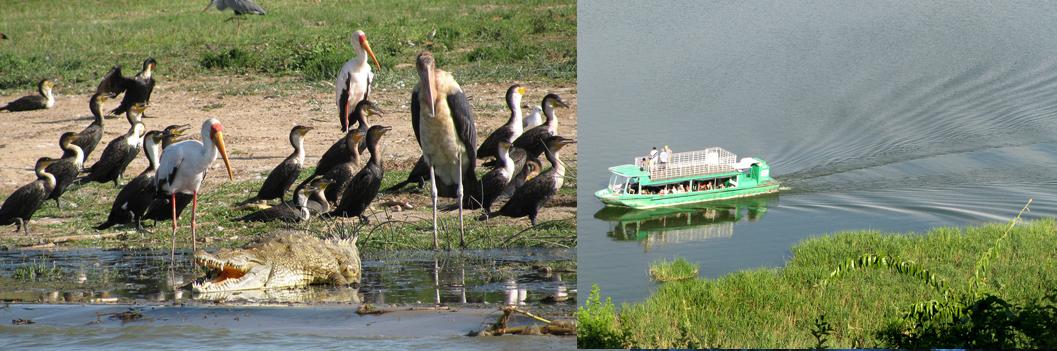 kazinga-channel-drive-uganda-safari