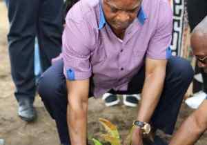 Journée de l'arbre: Denis Sassou-N'Guesso a planté un Azobé au village Okondo