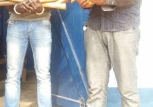 Congo Brazza: Trois présumés trafiquants d'ivoire arrêtés à Ouesso Chef-lieu du département de la Sangha.