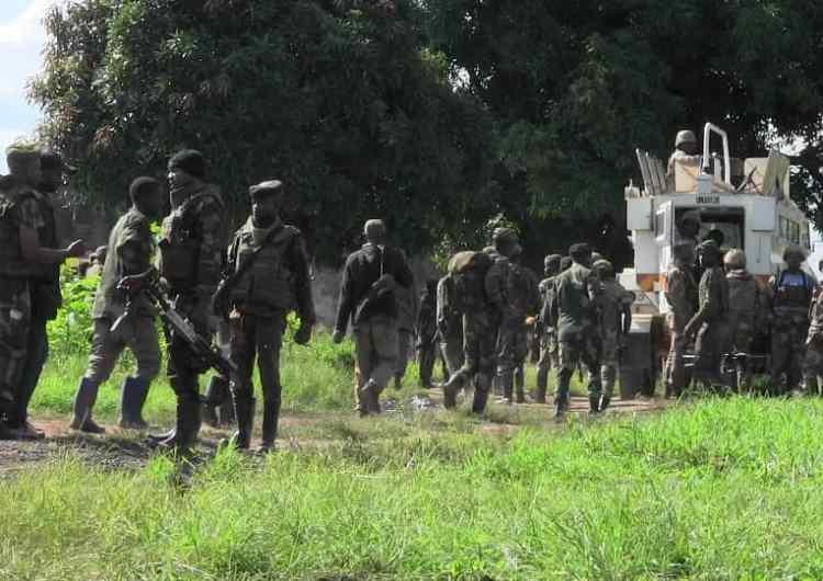 RDC-Beni: 23 ADF tués dans un affrontement avec les Fardc