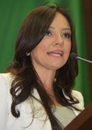 Dip. Adriana Hernández Iñiguez