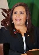Dip. Belinda Iturbide Díaz
