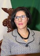 Dip. Socorro de la Luz Quintana León