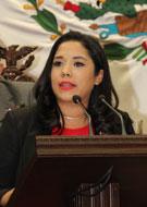 Dip. Xochitl Gabriela Ruíz González