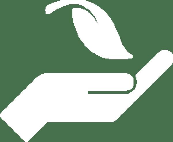 """CONGRESO VIRTUAL DESARROLLO SUSTENTABLE  y  DESAFÍOS AMBIENTALES """"Soluciones ambientales en el marco de la emergencia climática"""""""