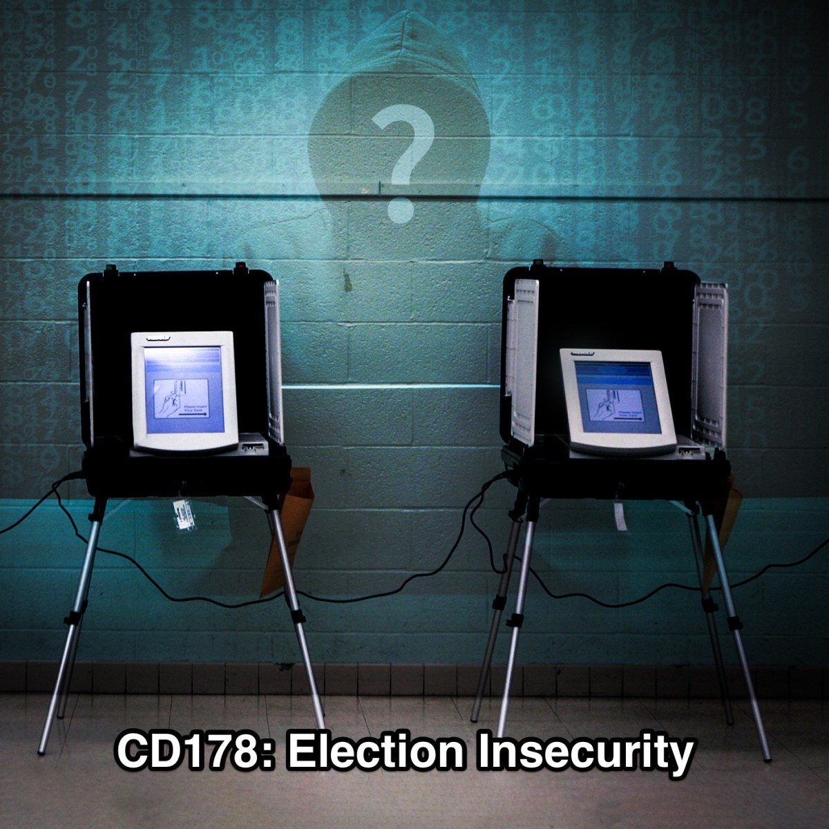 CD178: Election Insecurity