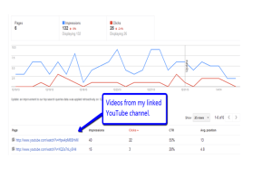 Video Results in Author Stats
