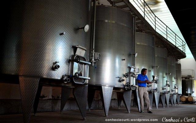 Nosso guia na Undurraga explicando o processo de fabricação do vinho