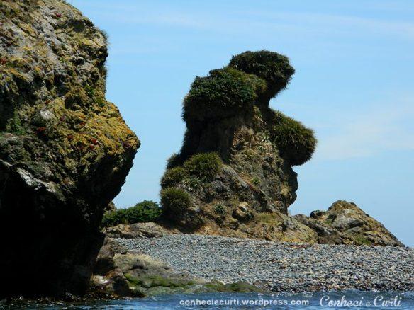 O Urso de Pedra em Puñihuil, Chiloé.