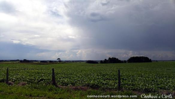 Chegando na Colônia Witmarsum - Paraná