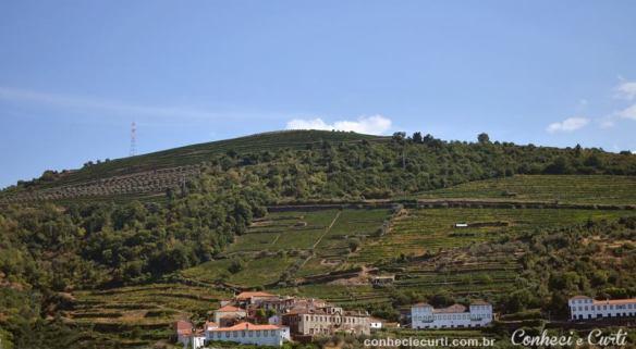 Paisagem do Alto Douro, Portugal.
