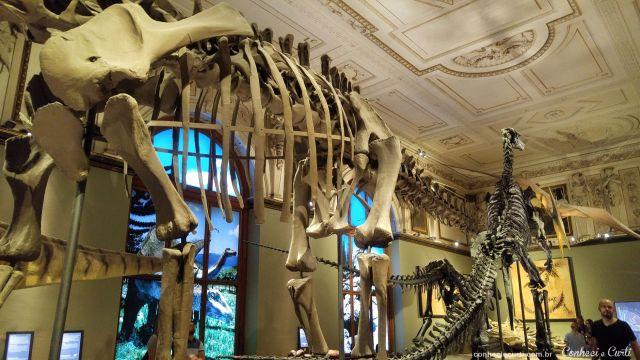 Sala dos Dinossauros no Museu de História Natural de Viena,