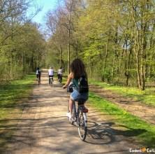 O trecho que passa pelo Bürgerpark.