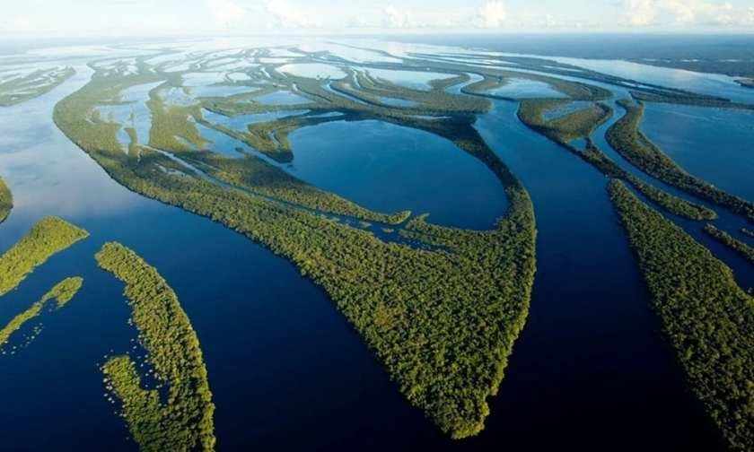 Bacia Amazônica: conheça as riquezas naturais da maior bacia hidrográfica  do mundo - Conhecimento Científico