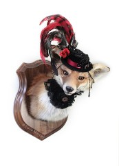 Anthropomorphic Taxidermy Art Fox Lady by Lucia Mocnay