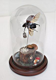 (back) Rhino beetle, metal birdcage, wood, miniatures, textiles, dwarf, faux mushroom, paper flower