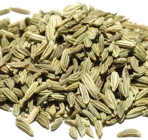 Fennel Seed in Herbs in the Conjure Shop, magickal goods by Magus (Kevin Trent Boswell)