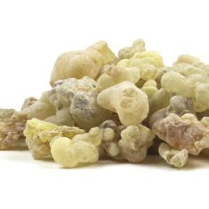 Frankincense (Boswellia carteri) at conjurework.com