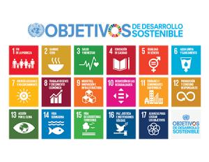 S 2018 SDG Poster with UN emblem 300x232 - ¿Incluyes los objetivos de desarrollo sostenible en tus proyectos?  Te cuento 3 maneras sencillas de hacerlo.