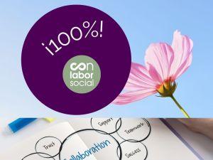 100 de los que escogieron Conalborsocial opinaron que 1 - 100% de los que escogieron Conalborsocial, opinaron que (1)