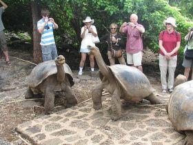 Tortugas Galápagos y Turistas