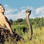 Tippi, Verdadera Mowgli - Namibia