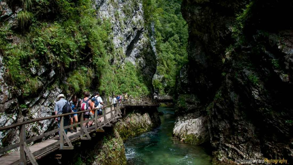 Vintgar Gorge - Eslovenia