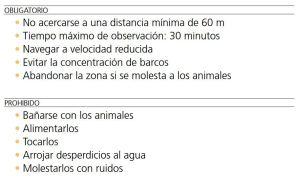 Normas para Avistamiento de Cetaceos - Tenerife