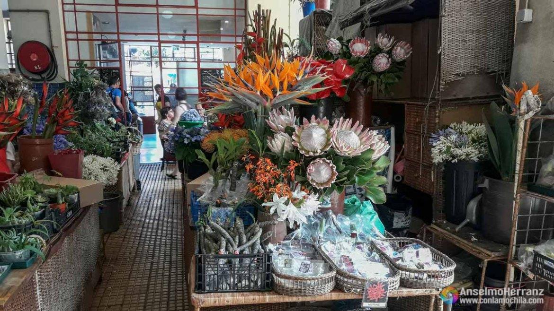 Puestos de Flores del Mercado Dos Lavradores - Funchal -Madeira