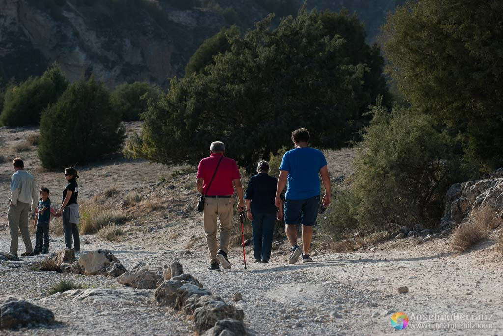 Bajada del Camino de San Frutos desde el Aparcamiento