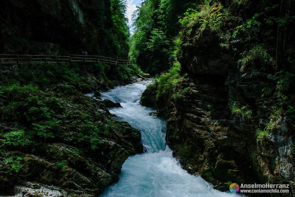 Río Radovna y la pasarela que recorre Vintgar Gorge - Eslovenia