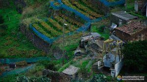Huertas, viñedos y el montacargas de El Batan