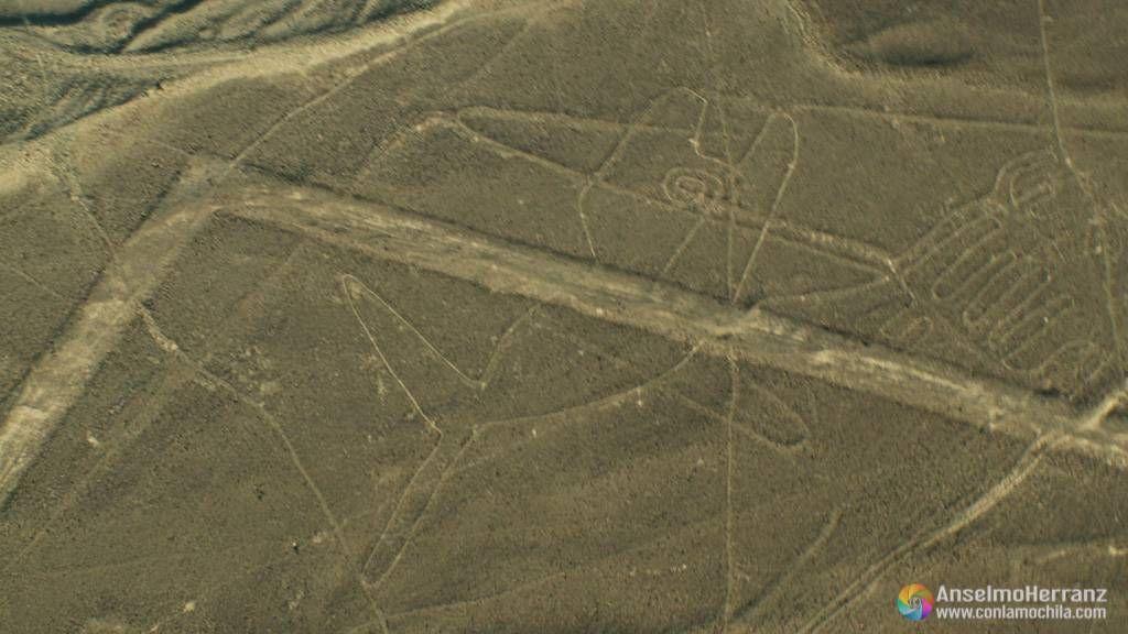 La Ballena - Líneas de Nazca - Perú