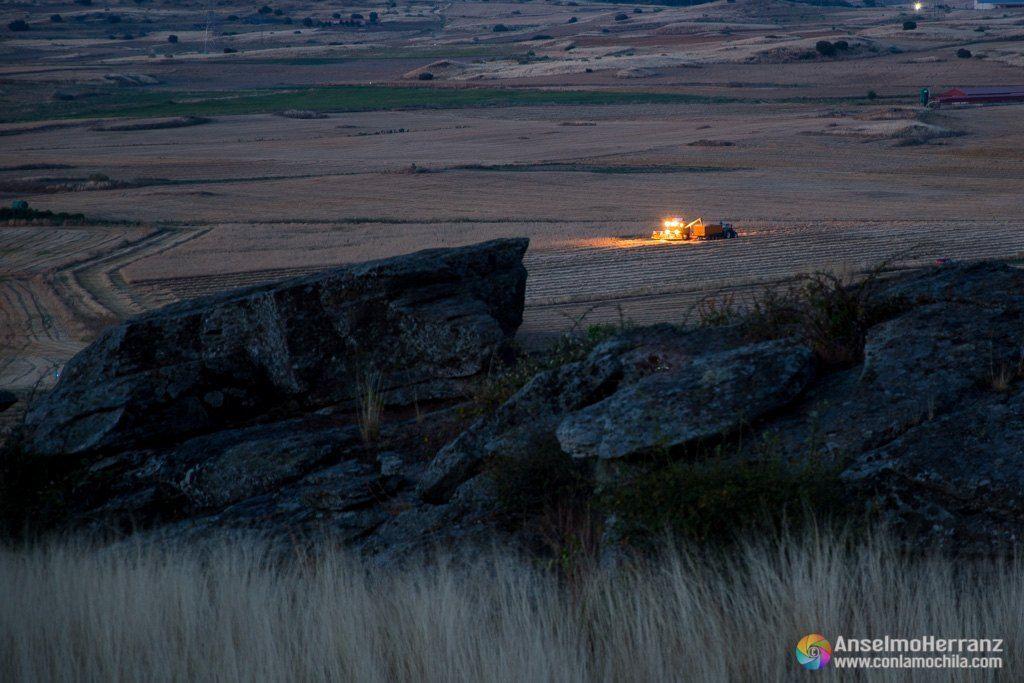 Segando los campos de cereal - Miguelañez - Segovia