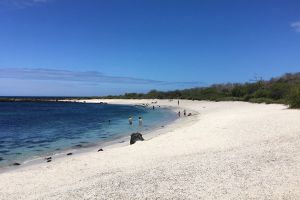 Playa Punta Carola - Isla de San Cristóbal - Galápagos | Foto: Holgereberle