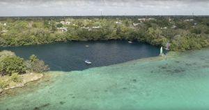Cenote Negro o Cenote de la Bruja - Bacalar - Quintana Roo - México