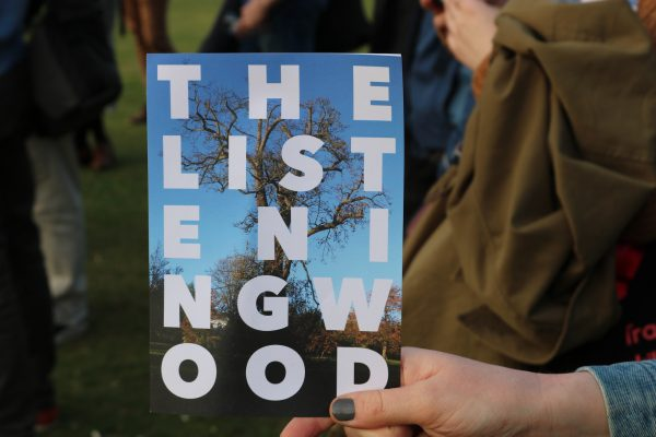 Hand holding a printed brochure with the title The Listening Wood
