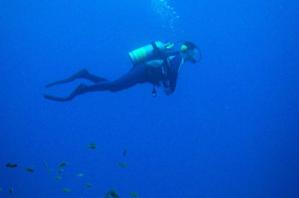 scuba photo from Neville Wootton
