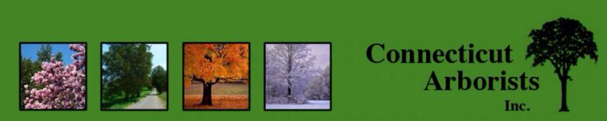 Connecticut Arborist