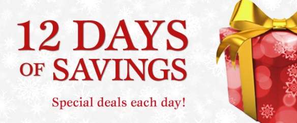 BANNER - Connecting POINT'S 12 days of savings 2016