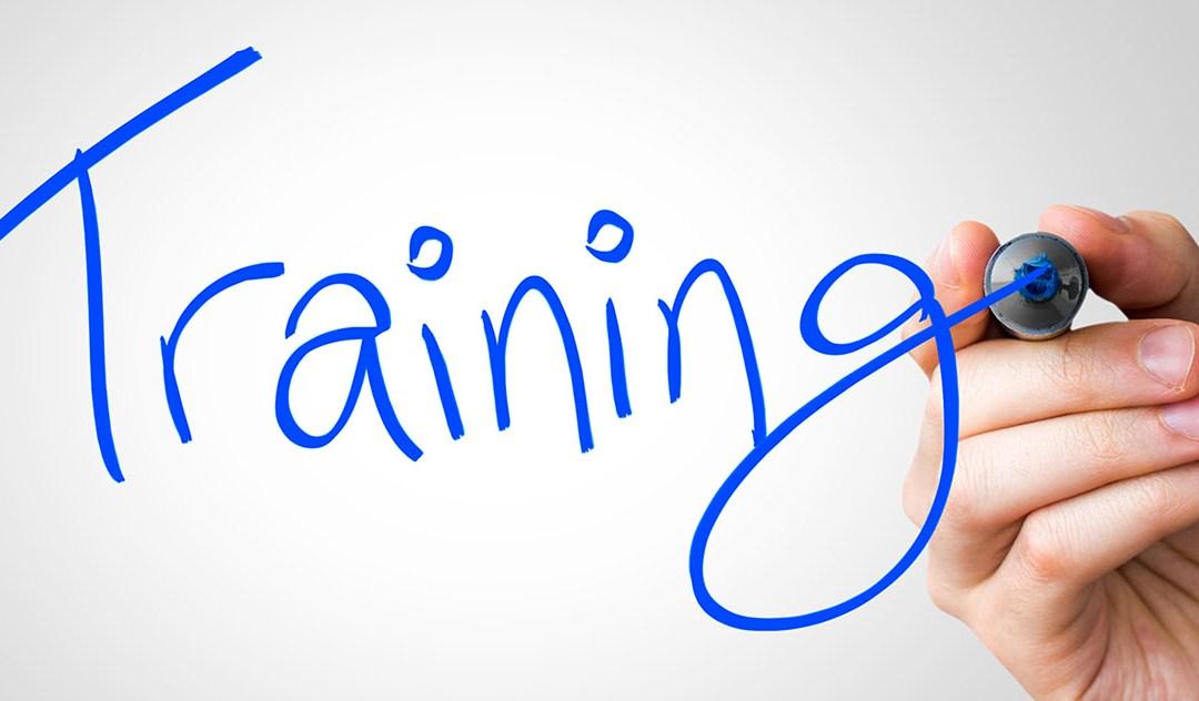 Companion Training PowerPoint Slides