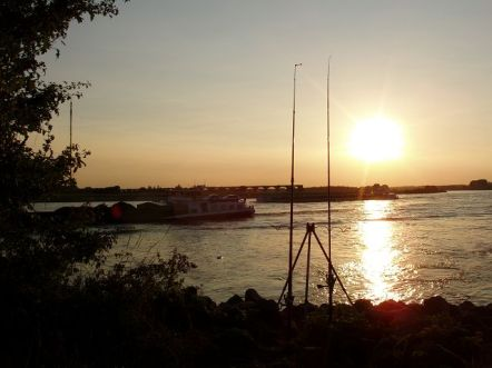 Rhein bei Wesel