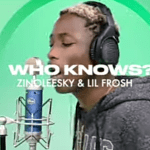 Zinoleesky ft Lil frosh – Who Knows MP3 DOWLOAD song